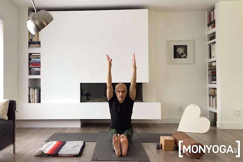 Séance de Yin Yang Yoga Variations autour de la posture de Dandasana