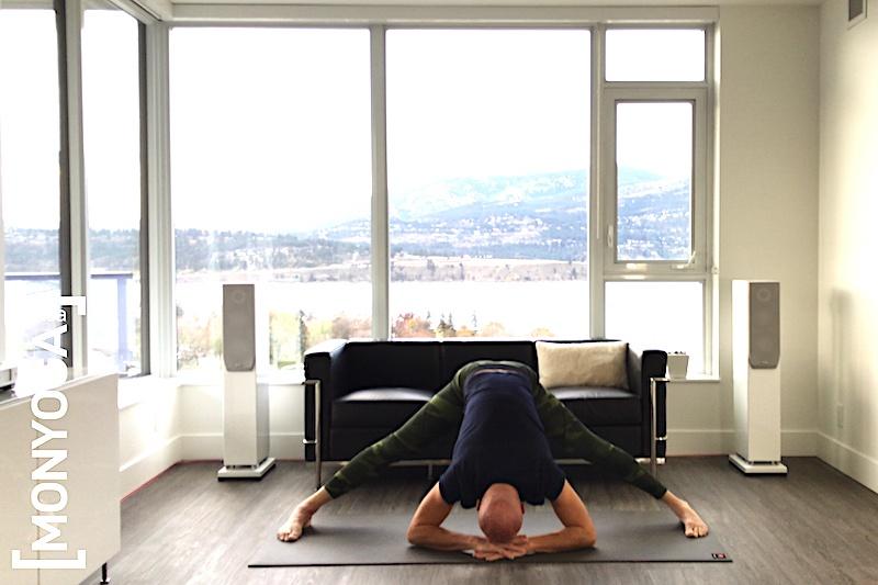 Séance de Yin Yang Yoga pour augmenter son énergie et sa force vitale